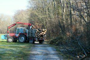 Traktor,Waldarbeit,Forst
